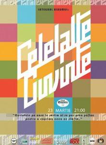 CELELALTE CUVINTE -Albumul cu patratele